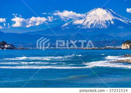 神奈川神奈川縣県富士山,湘南海岸的早晨 37251514