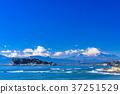 神奈川神奈川縣県江之島和富士山,早上在湘南海岸 37251529