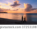 Silhouette of couple walking on beach at sunset 37253108
