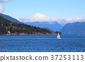 Small white sail yacht sailing in blue sea 37253113