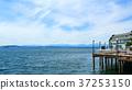seattle pier 37253150