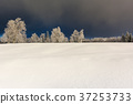 Wintertime - Black Forest Germany 37253733