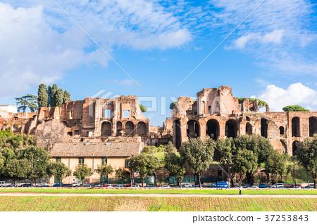 로마 팔라 티 누스 언덕 37253843