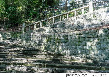 Stone stairs of Kunosan Toshogu Omotesando 37256133