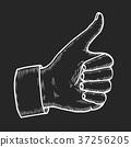 Hand showing symbol Like. 37256205