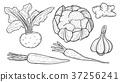 Farmers market badge. 37256241