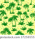 Tropical Palms Silhouettes Seamless 37256555
