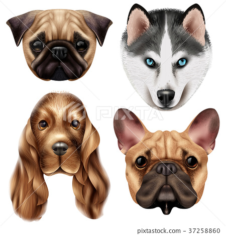 Realistic Dog Breed Icon Set 37258860