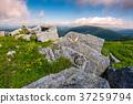 mountain, grassy, rocks 37259794