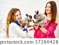 Little girl and young woman with rabbits 37260428