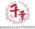 chiba, calligraphy writing, cherry blossom 37262650