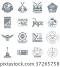 musical instruments logo 37265758