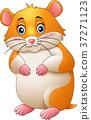 Cute hamster cartoon 37271123