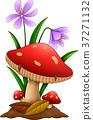 Cartoon mushroom isolated white background 37271132