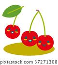 樱桃 水果 父母身份 37271308
