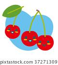 樱桃 水果 父母身份 37271309