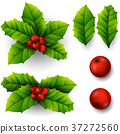 xmas, holly, christmas 37272560