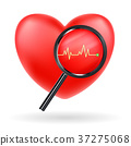 magnify glass scanning red heart beat vector 37275068