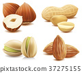 Collection of various nuts on isolated on white 37275155