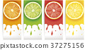 lime, lemon, orange, grapefruit juice with slices 37275156