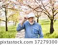 Senior man in love outside in spring nature. 37279300