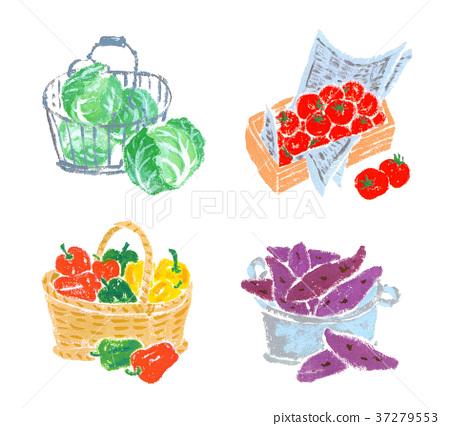 蔬菜 甘蓝 包菜 37279553