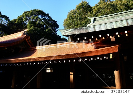 Meiji Jingu Shrine in the New Year and Hatsugu 37282147