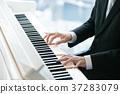 피아노, 남성, 남자 37283079