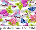 自然 春天 春 37283968