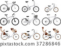 bicycle, bike, carriage 37286846