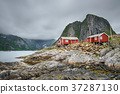 Hamnoy, cottages, red 37287130