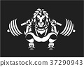 Powerlifting,barbell,squat 37290943