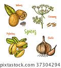 食物 食品 香料 37304294