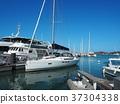 New Caledonia 37304338
