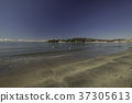 หาดทราย,มหาสมุทร,คลื่น 37305613