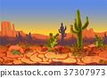 vector desert landscape 37307973