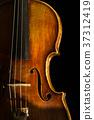 violin, violins, stringed instrument 37312419