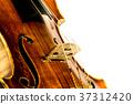 Violin 37312420