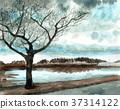 ทัศนียภาพ,ภูมิทัศน์,ธรรมชาติ 37314122
