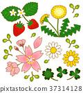 春天的插圖 37314128