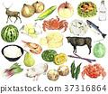 水彩畫 食品 原料 37316864