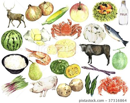 水彩画 食品 原料 37316864