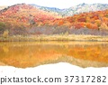 hachimantai, autumnal, fall 37317282