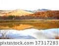 hachimantai, autumnal, fall 37317283