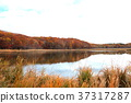 hachimantai, autumnal, fall 37317287