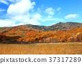 hachimantai, autumnal, fall 37317289