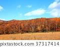 hachimantai, autumnal, fall 37317414