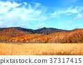 hachimantai, autumnal, fall 37317415
