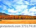 hachimantai, autumnal, fall 37317418