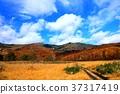 hachimantai, autumnal, fall 37317419